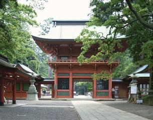 鹿島神宮楼門の写真素材 [FYI03290465]