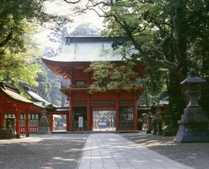 鹿島神宮楼門の写真素材 [FYI03291144]