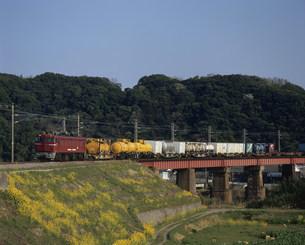 貨物列車の写真素材 [FYI03291423]