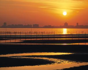 東京湾三番瀬と夕陽 船橋市1月の写真素材 [FYI03291584]