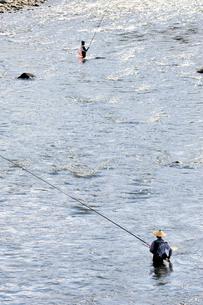 アユ釣り(那珂川)の写真素材 [FYI03292860]