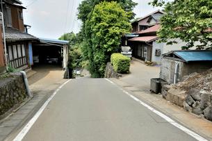 箱根旧街道こわめし坂の写真素材 [FYI03293037]
