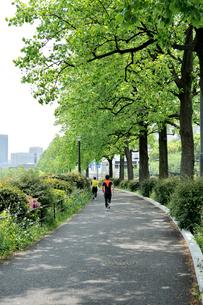 ジョギングする人達の写真素材 [FYI03293235]