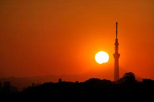 東京スカイツリーとダイアモンド富士の写真素材 [FYI03293572]