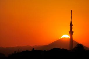 東京スカイツリーとダイアモンド富士の写真素材 [FYI03293574]