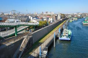 旧江戸川の防潮堤と町並みの写真素材 [FYI03293793]