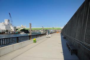 旧江戸川の防潮堤の写真素材 [FYI03293797]