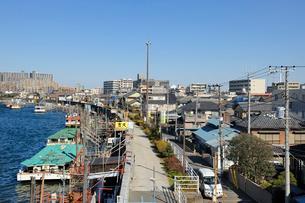 旧江戸川の防潮堤と町並みの写真素材 [FYI03293802]