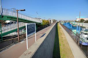 旧江戸川の防潮堤と町並みの写真素材 [FYI03293806]