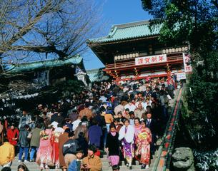 成人の日の鶴岡八幡宮の写真素材 [FYI03297488]