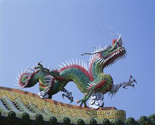 龍の写真素材 [FYI03297926]