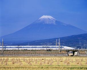 富士山と新幹線500系の写真素材 [FYI03297962]