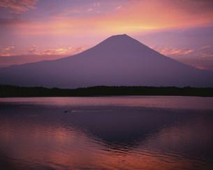 富士山と田貫湖夜明けの写真素材 [FYI03297996]
