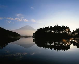 木立と富士山と田貫湖の写真素材 [FYI03298050]