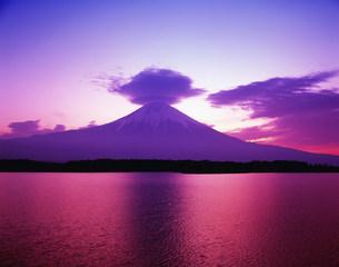笠雲富士と田貫湖の写真素材 [FYI03298059]