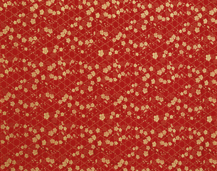 帯柄 赤に金梅のイラスト素材 [FYI03298155]