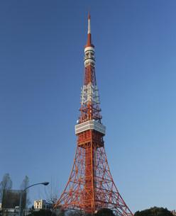 東京タワーの写真素材 [FYI03298207]
