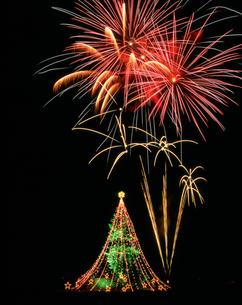 花火とジャンボクリスマスツリーの写真素材 [FYI03298223]