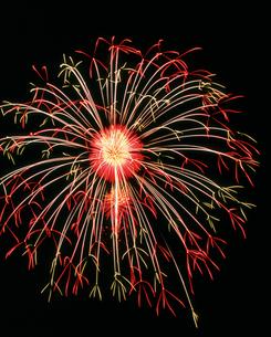 長野えびす講煙火大会十号 昇り曲導付八重芯銀冠彩色花の写真素材 [FYI03298239]