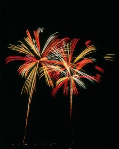 境町利根川花火大会 彩色の万華鏡の写真素材 [FYI03298307]