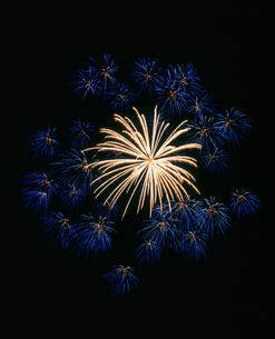 新町ふるさと祭り花火大会 10号 芯入り千輪の写真素材 [FYI03298312]