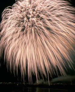 長岡まつり大花火大会 ベスビアス超大型スターマインの写真素材 [FYI03298335]