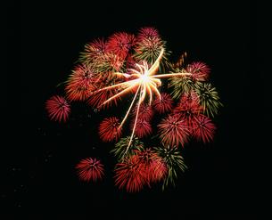 長岡まつり大花火大会 昇曲導大葉芯輪中の彩色百花園の写真素材 [FYI03298342]