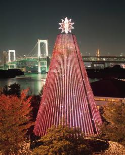 お台場メモリアルツリー クリスマスの写真素材 [FYI03298713]