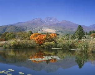 妙高山といもり池の紅葉の写真素材 [FYI03298874]
