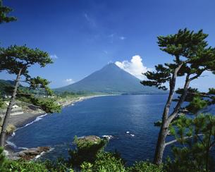 開聞岳 瀬平公園より望むの写真素材 [FYI03299128]