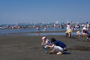 三番瀬の潮干狩り 東京湾三番瀬の写真素材 [FYI03299473]