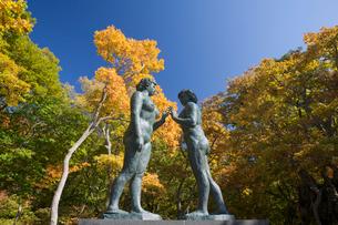 乙女の像と紅葉する十和田湖 休屋御前ヶ浜の写真素材 [FYI03299542]