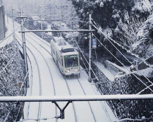 雪の荒川線 学習院下付近の写真素材 [FYI03300370]