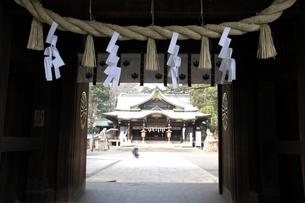 東京のへそ 大宮八幡宮の写真素材 [FYI03300418]