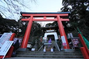 江ノ島神社 鳥居と随身門の写真素材 [FYI03300559]