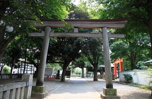 旗岡八幡神社 裏参道の鳥居の写真素材 [FYI03300620]