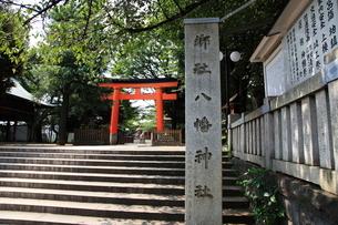 旗岡八幡神社 社号標と参道の写真素材 [FYI03300622]