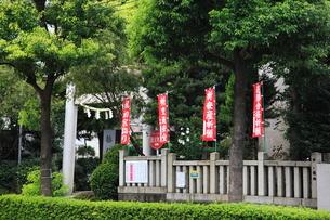 徳持神社 祈願旗の写真素材 [FYI03300656]