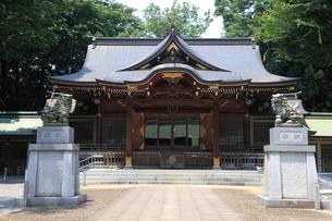 荻窪八幡神社 拝殿の写真素材 [FYI03300672]