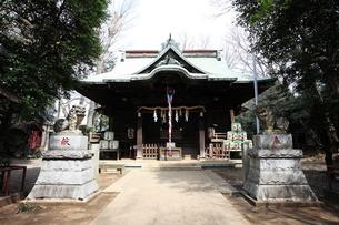 小金井神社 狛犬と拝殿の写真素材 [FYI03300722]