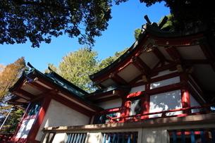 永福稲荷神社 神殿の写真素材 [FYI03300786]