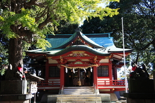 永福稲荷神社 拝殿の写真素材 [FYI03300787]