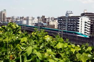 東北新幹線E5系の写真素材 [FYI03300846]