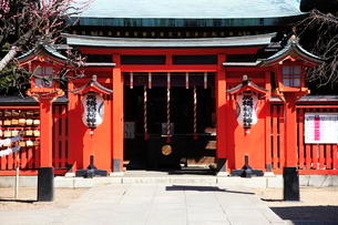 馬橋稲荷神社拝殿の写真素材 [FYI03300857]