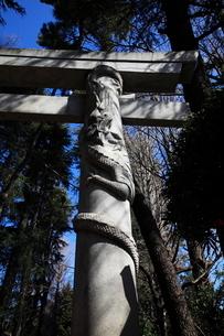 馬橋稲荷神社二の鳥居に彫られた龍の写真素材 [FYI03300927]