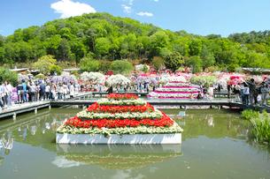 足利フラワ-パ-クの池の写真素材 [FYI03300929]