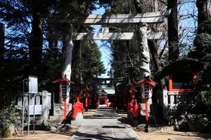 馬橋稲荷神社一の鳥居と参道の写真素材 [FYI03300931]