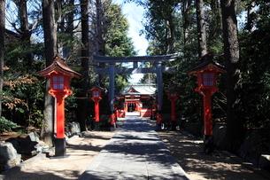 馬橋稲荷神社参道の写真素材 [FYI03300933]
