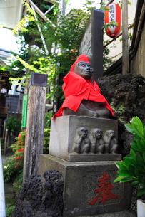 巣鴨地蔵通りの猿田彦大神の狛猿の写真素材 [FYI03300957]