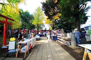 雑司ヶ谷鬼子母神堂フリ-マ-ケットの写真素材 [FYI03301079]